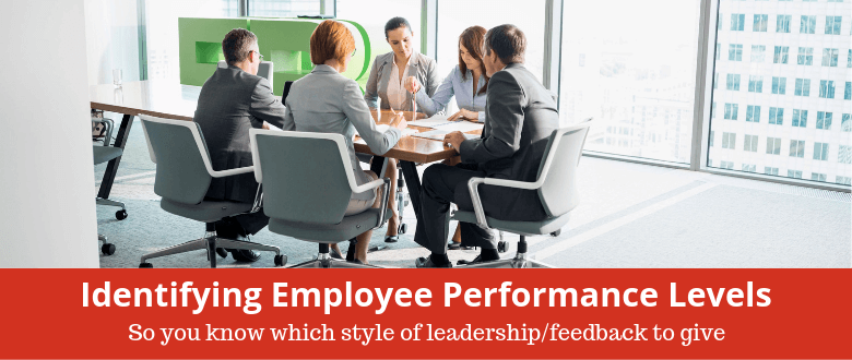 feature-employee-performance-levels