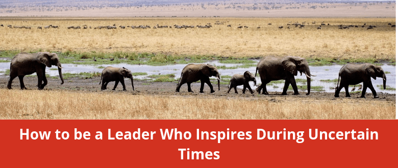 feature-leader-uncertain-times