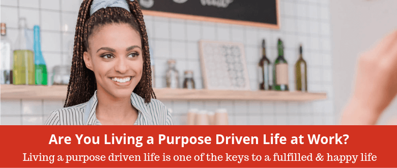 feature-purpose-driven-life